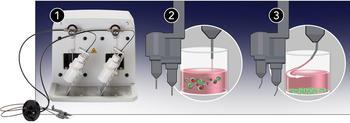 Aufrüstbare Zweifach-Injektoren sind für eine gute Durchmischung mit geraden (2) oder für zellbasierte Assays mit angewinkelten Spitzen (3) erhältlich