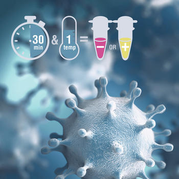 Ob als Rohmaterial oder als Kit-Lösung: COVID-19 Forschung mit NEB Produkten