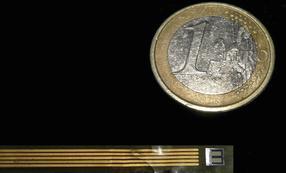 UAB-CSIC_Biosensor