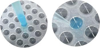 Sterilized RAPID Slit Seal close-up image