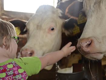 Wie Bauernhöfe vor Asthma im Kindesalter schützen