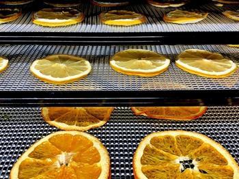 Werden die Früchte auf ein Gitter gelegt, werden sie durch den Ionenwind schneller und gleichmässiger getrocknet.