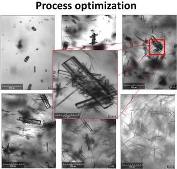 Process development and optimization with the Crystalline instrument and real time particle imaging