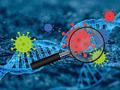 Suche nach Corona-Mutanten: Brandenburger Start-up sequenziert ab sofort positive Testergebnisse