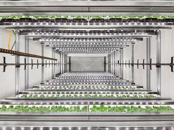 Infarm introduces its new high-capacity, cloud-connected Growing Centers - a major step in the company's efforts to accelerate the benefits to people and planet by building a scalable, sustainable and resilient global farming network