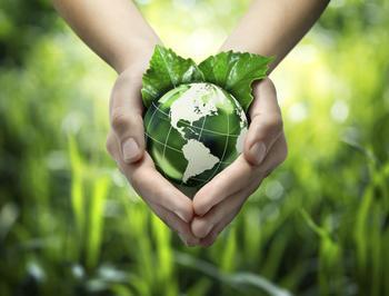 Nachhaltigkeit & Umweltschutz im Fokus