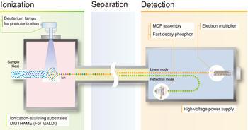 Mass Spec process