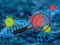 CRISPR discovery paves the way for novel COVID testing method