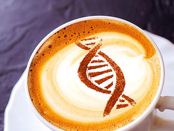 Espresso, latte or decaf? Genetic code drives your desire for coffee