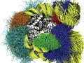 Respiración del nucleosoma a partir de instantáneas temporales atomísticas