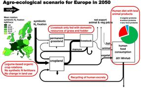 Diagram of a possible agro-ecological scenario for 2050.