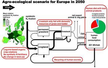 Diagramm eines möglichen agro-ökologischen Szenarios für 2050.