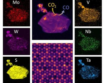 Scanning transmission electron microscope images of a high entropy transition metal dichalcogenide alloy flake in its entirety and an atom-resolved section. Monochromatic images depict the distribution of different elements.