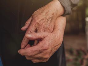 Wissenschaftler:innen entdecken neue Regulatoren des Alternsprozesses