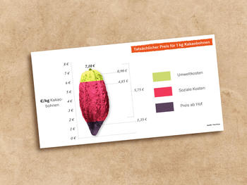 Actual price for 1kg cocoa beans