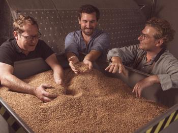 Getreide aus der Region. Die Basis für den hochreinen Neutralalkohol.