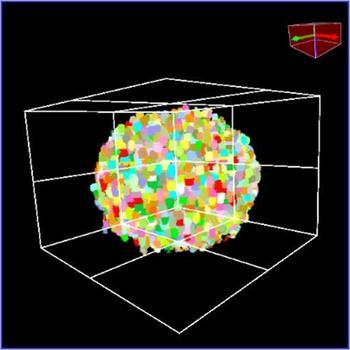 3D image recognition for quantitative 3D cell analysis