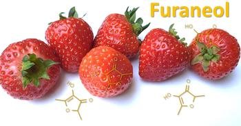 The odorant furaneol gives strawberries and other foods a caramel-like aroma. Figure: G. Olias / LSB, The figure shows strawberries an the structural formula of the odorant furaneol.