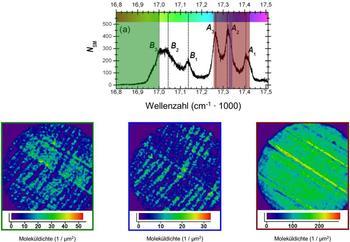 Klar wie ein Kristall_Bayreuther Physiker machen komplexe molekulare Strukturen sichtbar