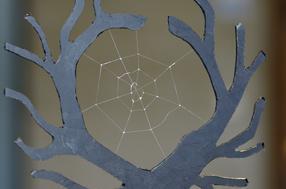 Spinnennetz aus biotechnologisch hergestellten Spinnenseidenproteinen