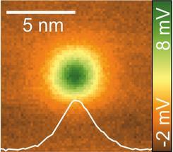 Raster-Quantenpunkt-Mikroskopie-Aufnahme