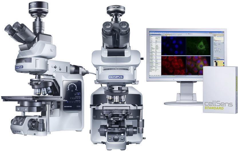 Fluoreszenzmikroskop oder polarisationsmikroskop