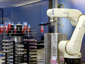 automatisierte Produktion von mesenchymalen Stammzellen