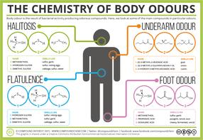 The Chemistry of Body Odours – Sweat, Halitosis, Flatulence & Cheesy Feet