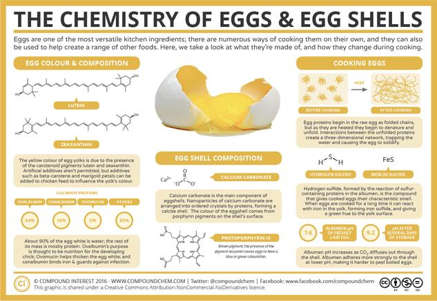 The Chemistry of Eggs & Egg Shells