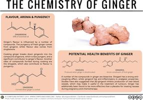The Chemistry of Ginger – Flavour, Pungency & Medicinal Potential