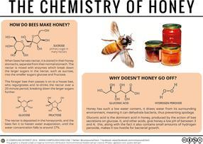 Why Doesn't Honey Spoil? – The Chemistry of Honey
