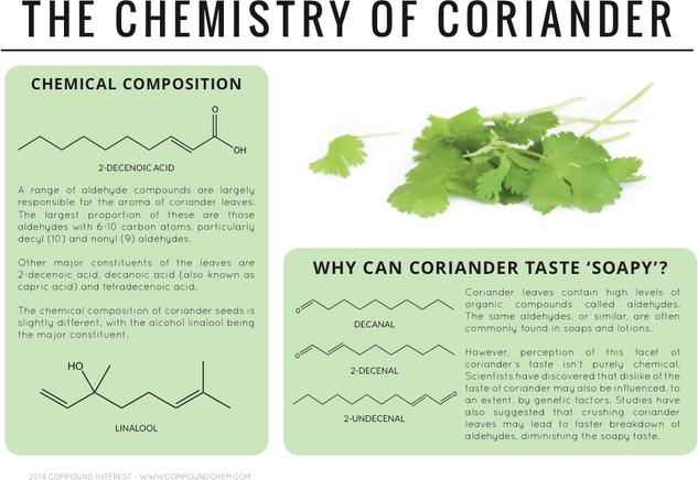 Why Can Coriander Taste Soapy? – The Chemistry of Coriander