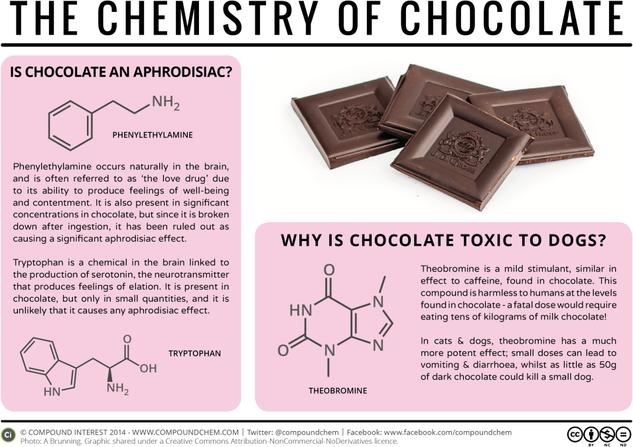 Toxicity & Aphrodisia – The Chemistry of Chocolate