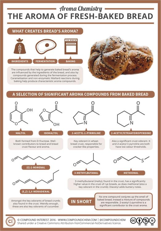 The Smell of Freshly-Baked Bread - Aroma Chemistry
