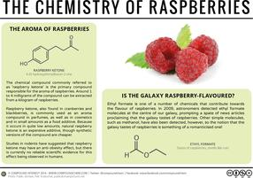 Raspberries, Weight Loss, & The Galaxy