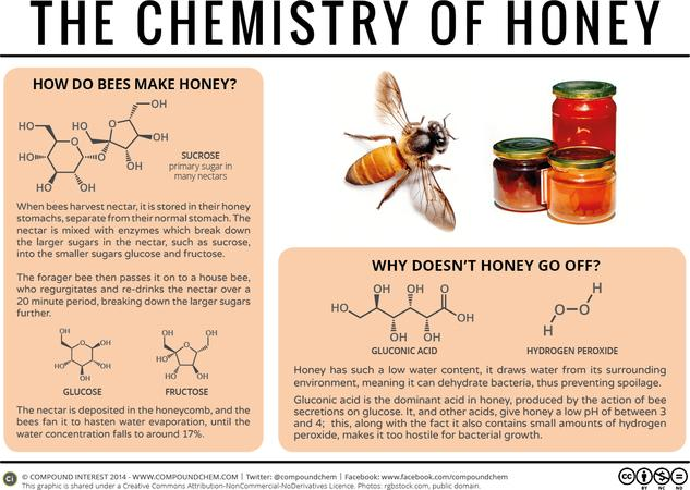 Why Doesn't Honey Spoil?