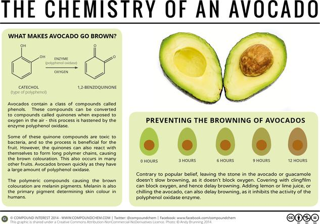 The Chemistry of Avocados