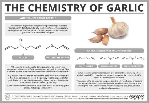 What Compounds Cause Garlic Breath? – The Chemistry of Garlic
