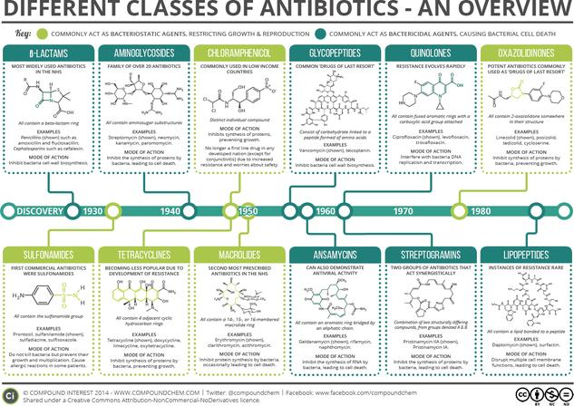 A Brief Overview of Classes of Antibiotics