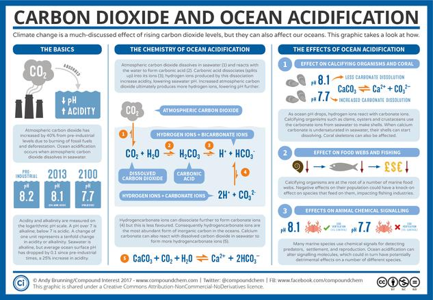 """Ocean Acidification: """"The Other Carbon Dioxide Problem"""""""