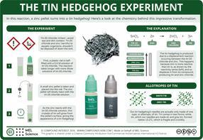 The Tin Hedgehog Experiment