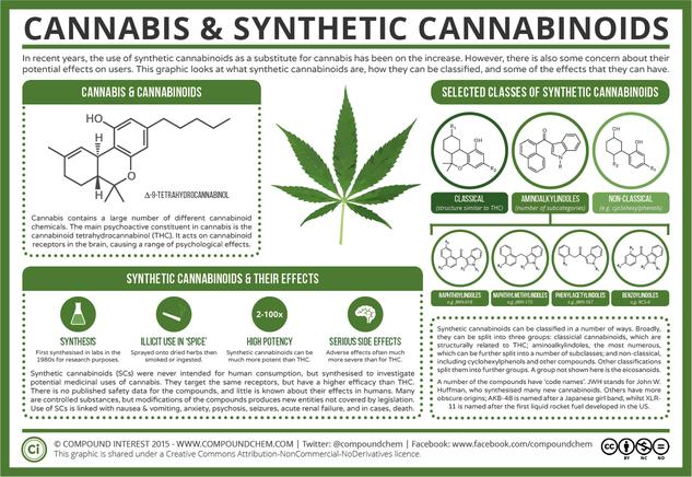 The Chemistry of Cannabis & Synthetic Cannabinoids
