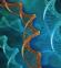 Hochreiner Mastermix für die Amplifikation eubakterieller DNA