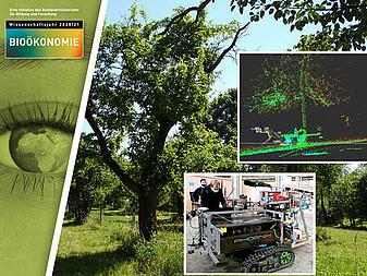 Ein intelligenter Roboter hilft beim Erhalt von Streuobstwiesen. Die Universität Hohenheim entwickelt einen autonomen Roboter, der beim Schnitt von Obstbäumen helfen soll, damit diese gesund alt werden.
