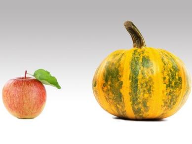 Von Äpfeln und Ölkürbissen: Neues aus der Mikrobiomforschung